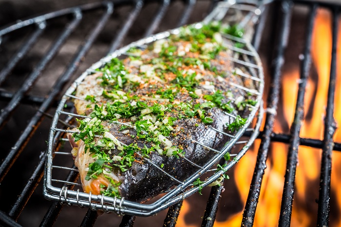 best gas grill for fish